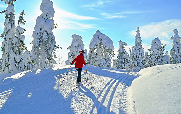 Nordic Skiing and Snowshoeing, Colorado