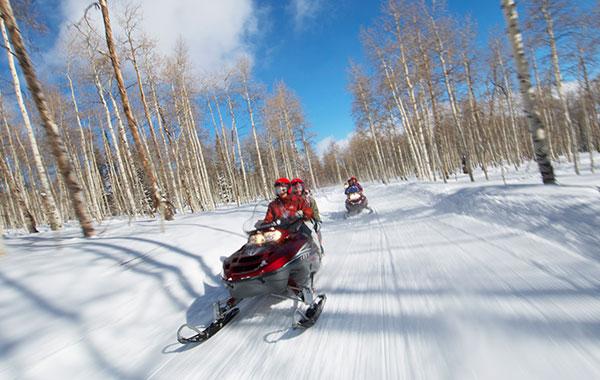 Sage Outdoor Adventures in Colorado