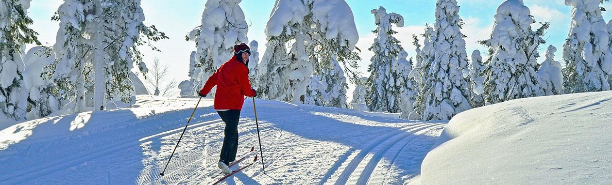 Colorado Nordic Skiing and Snowshoeing